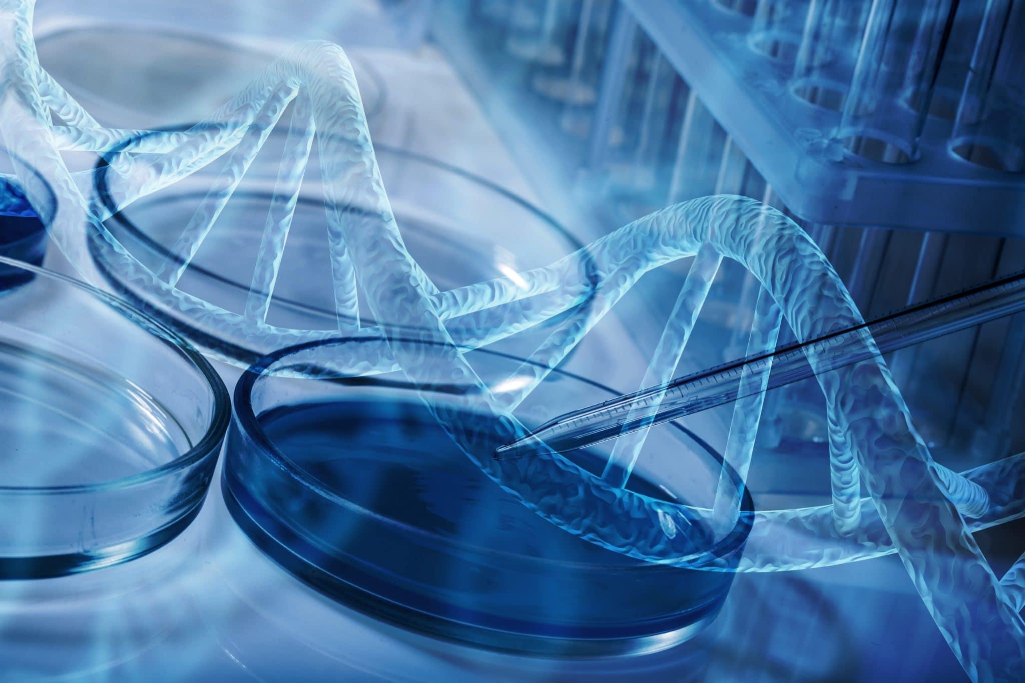 Novartis abre candidaturas a programa de aceleração de investigação científica em Portugal
